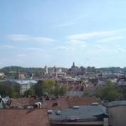 Vilnius roofs